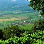 Colli Berici DOC panorama