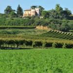 Vicenza DOC villa