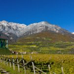 Cantina Tramin - Mountains overlooking the vineyards