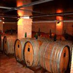 Tinazzi Winery (2)