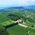 Villa Cordevigo estate