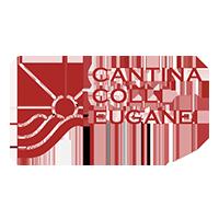cantina-colli-euganei
