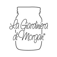 img_profilo_social_Morgan