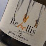 Rebellis | Giannitessari