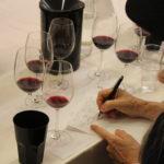 Radici del Sud 2019 - blind tasting 6 GIUGNO - 16
