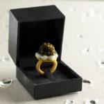 l'anello - Foto Carlo Baroni