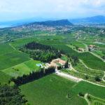 Villabella Villa Cordevigo estate view