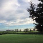 Villabella vineyard view 3