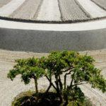 Riccardo Serra - Giardino zen